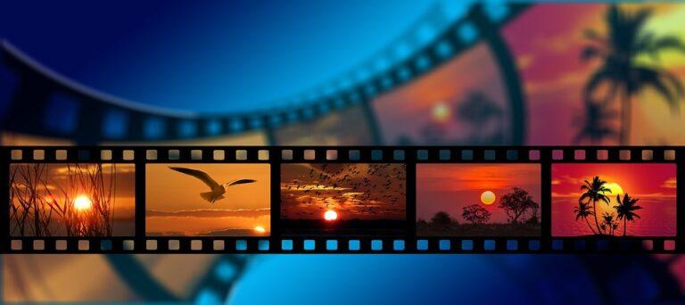 Il Cinema sotto alle stelle