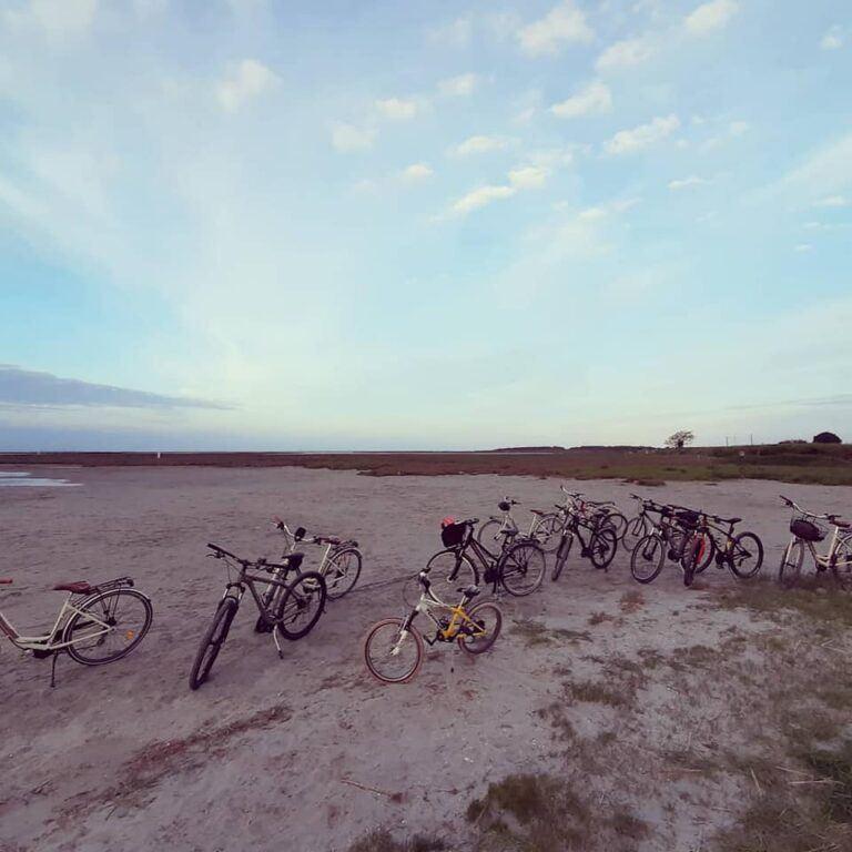 Bici e cicloturismo